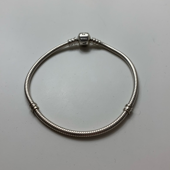 Pandora Charm Bracelet NWOT
